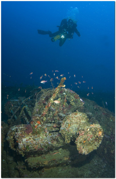 You are browsing images from the article: Shipwreck Kalogeros